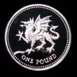 Elizabeth II Decimal £1 1995 Reverse